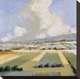 Sunny Fields I Stampa su tela di Robert Seguin