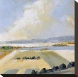 Sunny Fields II Stampa su tela di Robert Seguin