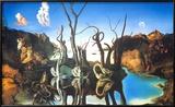 Refleksjoner av elefanter Posters av Salvador Dalí
