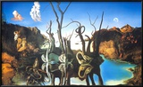 Spejlbillede af elefanter  Plakater af Salvador Dalí