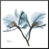 Orchids in Blue Kunst op hout van Albert Koetsier