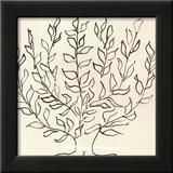 Le Platane Láminas por Henri Matisse