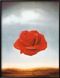 La rosa meditativa, ca. 1958 Arte por Salvador Dalí