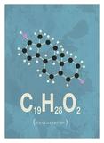 Molecule Testosterone Posters af  TypeLike
