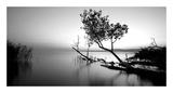Great Lake Kunstdrucke von  PhotoINC Studio