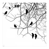 Bird II Posters af  GraphINC