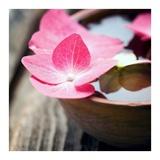 Zen Bowl Posters av  PhotoINC Studio