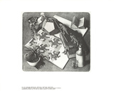 Répteis Impressão colecionável por M.C. Escher