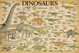 Smithsonian- Dinosaurs Info Chart Poster