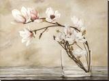 Fiori di magnolia Stretched Canvas Print by Cristina Mavaracchio