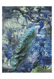 Peacock Jungle Sea Print by Smith Haynes