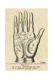 Palmistry: Palm Diagram Plakater av  Vintage Reproduction