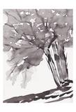 Noir Tree Plakater av Beverly Dyer