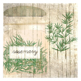 Rosemary Posters by Kimberly Allen