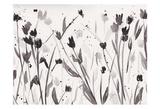 Noir Meadow Art par Beverly Dyer