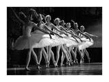 Swan Lake ballet Reproduction procédé giclée