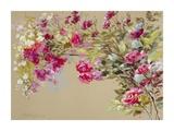 The Garden of the Rose II Reproduction procédé giclée par Nel Whatmore