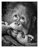Big Smile..Please Reproduction procédé giclée par Angela Muliani Hartojo