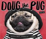 Doug the Pug - 2018 Boxed Calendar Kalenders