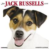 Just Jack Russells - 2018 Calendar Kalenterit