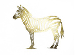 Gold Foil Zebra Posters af Ethan Harper