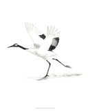 Japanese Cranes III Giclee Print by Naomi McCavitt