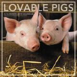 Lovable Pigs - 2018 Calendar Calendars