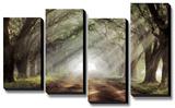 Evergreen Plantation Bedruckte aufgespannte Leinwand von Mike Jones