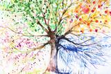 Gekrulde boom Print van  DannyWilde