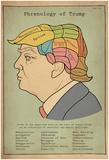 Phrenology Of Trump Poster