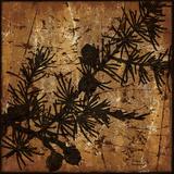 Brown Tree Plakat af Marilu Windvand