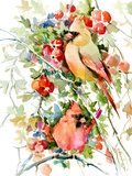 Cardinal Birds Posters par Suren Nersisyan