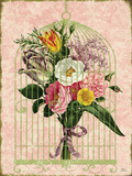 Flower Cage1 Prints by Marilu Windvand