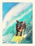 Surf Hound Prints by Noah Bay