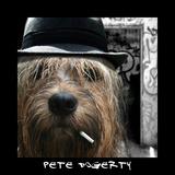 Pete Dogerty Prints by Noah Bay