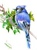 Geai bleu Reproduction procédé giclée par Suren Nersisyan