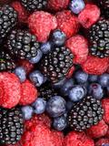 Summer Berries Láminas por  Grab My Art
