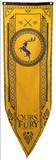 Game Of Thrones - Baratheon Tournament Banner Stampe