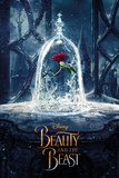 Beauty And The Beast Movie - Enchanted Rose Poster