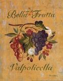 Valpolicella Prints by Pamela Gladding