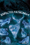 Harry Potter - Patronus Poster