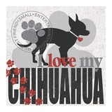 Chihuahua Poster by Kathy Middlebrook