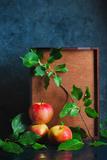Autumn Still Life with Apples Reproduction photographique par Dina Belenko