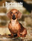 Dachshunds - 2018 Planner Kalenders
