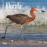 Florida, Wild & Scenic - 2018 Mini Calendar Calendários