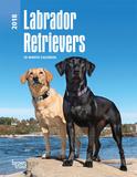 Labrador Retrievers - 2018 Planner Kalenders