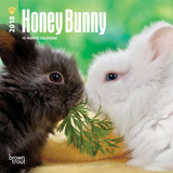Honey Bunny - 2018 Mini Calendar Kalenders