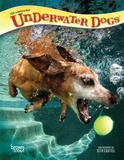 Underwater Dogs - 2018 Planner Kalenders