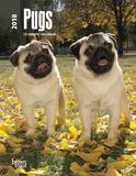 Pugs - 2018 Planner Kalenders