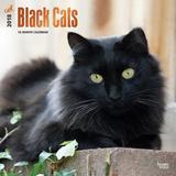 Black Cats - 2018 Calendar Calendriers